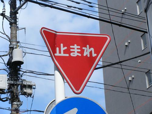 2008_1005yoyogi0007