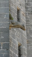 Carnets de vacances : du Canal du Midi  la valle d'Orb (brigeham34) Tags: church village gargoyle gargouille balade languedocroussillon clocher hrault collgiale towerbell