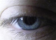 blue eyed (JimmyMac210 - just returned home from hospital) Tags: blue macro lashes skin macromonday