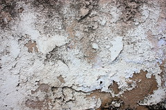 Worn Chippy Stucco (Tricia Breidenthal) Tags: moss peeling free overlay textures worn weathered layers crumble chippy stucco t4l t4lagree