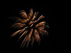 Diwali 017