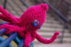 Anglų lietuvių žodynas. Žodis octopuses reiškia aštuonkojai lietuviškai.