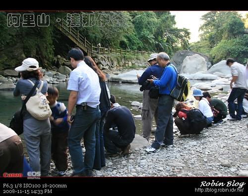 你拍攝的 20081115數位攝影_阿里山之旅117.jpg。