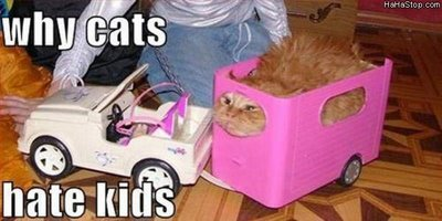 why_cats_hate_kids