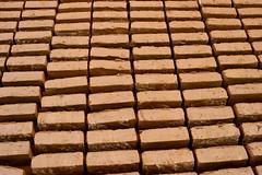 Bricks to dry