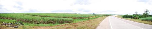 Outdoorgraphy™  : Ladang Tebu Chuping #3