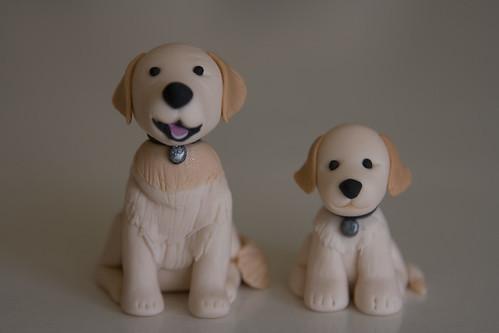 Dog & Puppy