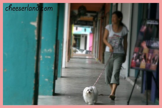 Granny walk