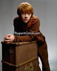 Rupert Grint (duck_jolie) Tags: love real ship united emma harry potter kingdom watson rupert grint duckjolie