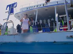 hurghada-reef dive