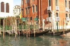 2007-V78  Venice (Old Fogey 1942) Tags: venice italy italia venezia rialto gondolas gondole canalgrande 2007v78