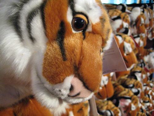 Tiger in FAO Schwartz store