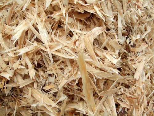 wood shavings, of the type formerly and commonly used for pet bedding (mice, hamsters, gerbils, rabbits, chinchilla, etc.)