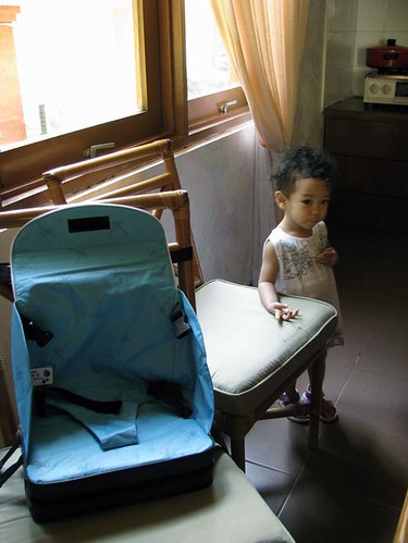 nataya's mobile high-chair