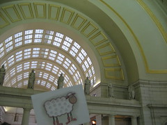 Loopy at Union Station