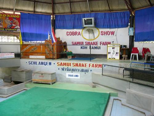 samui snake farm-サムイスネークファーム0015