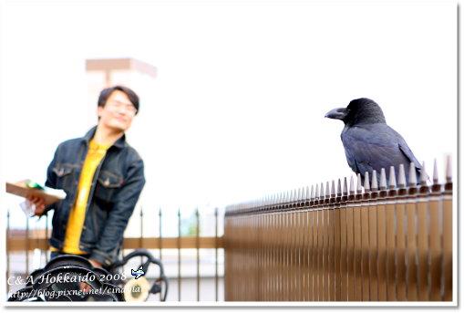 Hokkaido_0968
