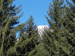 punti di vista sul bianco (= Paul =) Tags: estate monte courmayeur bianco