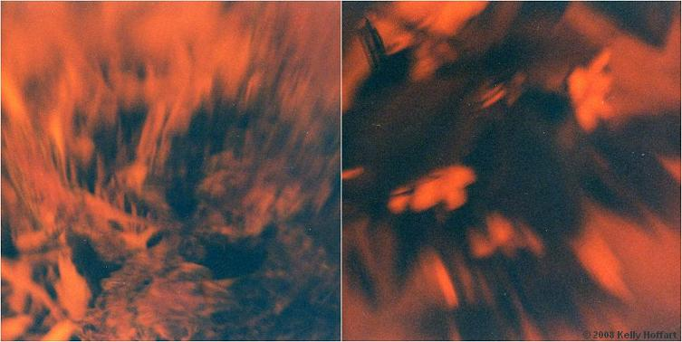 Abstract Redscale Diptych