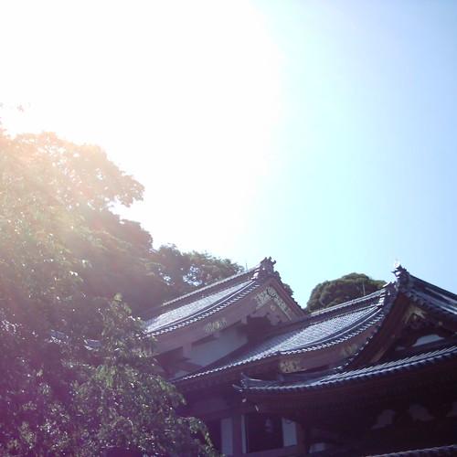 Sunshine [ Hase-dera / Kamakura ]