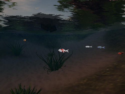 home-underwater