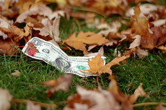 My Lucky Dollar [metaphor of a global crisis] (Mulia) Tags: park autumn london fall grass leaves foglie note luck dollar economic metaphor crisis finance banconota mulia nicephotosessioninthepark