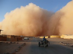 Storm reaching a camp for Saharawi refugees (UNHCR) Tags: refugee refugees sandstorm migration protection unhcr flchtling refugeecamps displaced displacement saharawi refugeecamp tindouf migrants refugiados migrante refugiado migranti rfugi refugie fluechtlinge saharawis bestofmywinners