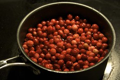 The Beginnings of Cranberry Sauce