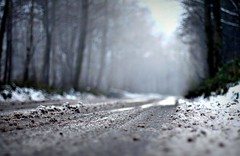 (andrewlee1967) Tags: road snow mist trees canon400d ef50mmf14usm andrewlee1967 uk fog mywinners andrewlee