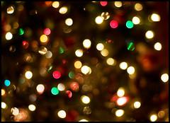 Merry Bokeh Christmas (MissMae) Tags: christmas red holiday color tree 50mm lights nikon bokeh merry d90 hbw savagephotography