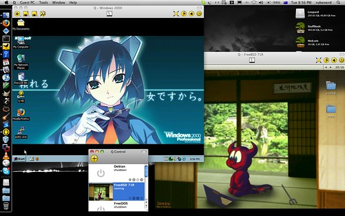 Q running Windows 2000 and FreeBSD 7.1-R