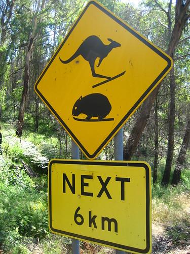 Австралийский юмор