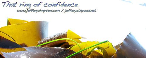 jefferysimpson.com banner