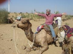 on a camel!