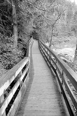 Boardwalk (bh88keys) Tags: snoqualmiefalls seattleflickrmeetup stroll0804