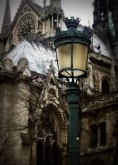 stepping back in time again (phoebe reid) Tags: light lamp post cathedral notredame crazybeautiful mywinners alesiurelystrollaroundnotredame
