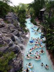 Typhoon Lagoon (kevkev44) Tags: world water ride upsidedown slide disneyworld rollercoaster launch waltdisneyworld studios slides mgm coaster themepark mgmstudios waterpark vekoma rocknrollercoaster darkride wavepool typhoonlagoon launchcoaster hollywoodstudios disneyshollywoodstudios rockcoaster