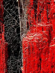 posting a post (msdonnalee) Tags: wood red abstract spider post web amazingcolor artlegacy  donnacleveland