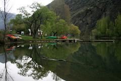 El monstruo del lago (Toxo Galego) Tags: canon arbol lago agua reflejo montaa pirineos pallars canon400d gumersindos