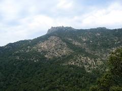 Sur le sentier de descente à San Gavinu : un piton rocheux en RD du Vivaggiu