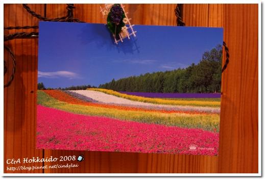 Hokkaido_0538