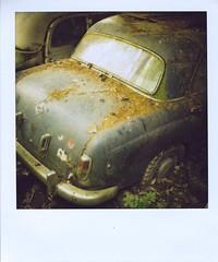 6 (Polaroid)