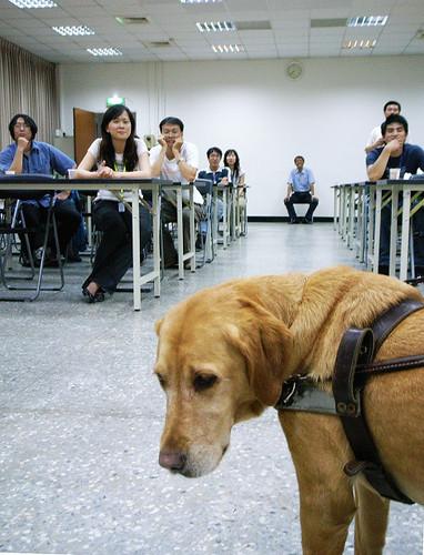 汪汪社導盲犬講座_004