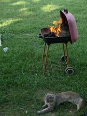 Fire0711C (robert_rvnwd) Tags: fire chewie