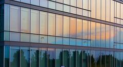 sunset reflection (alidanum) Tags: flickr estrellas