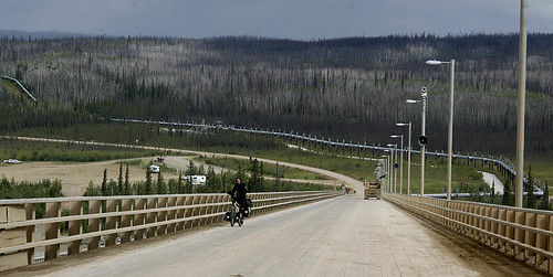 _MG_0097-Ivana-Yukon-bridge