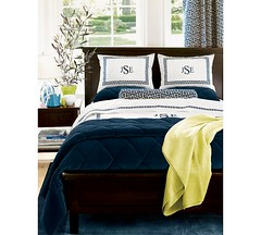 Pottery Barn Duvet & Velvet Quilt (The One and Only Jet Guer) Tags: barn pottery potterybarn