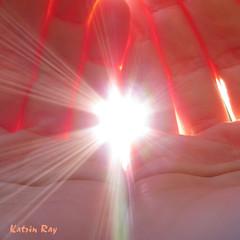 I cherished him just so (Katrin Ray) Tags: light sun creativity poetry artistic story supermacro fiatlux aworkofart andtherewaslight sunnymood creattivit thatscreativity katrinray oacaophotos