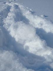 DSCF5377 (misslava1) Tags: winter white snow frozenlake
