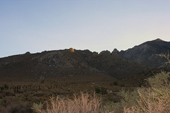 My old study site (Indian Wells Canyon) (naomi_bot) Tags: 395 labordayroadtrip